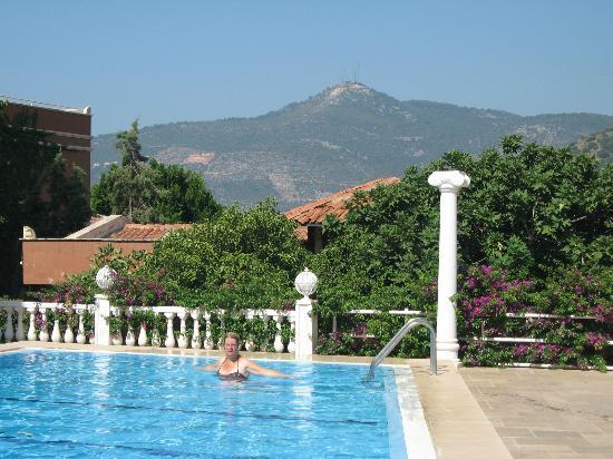 3T Hotel : Pool