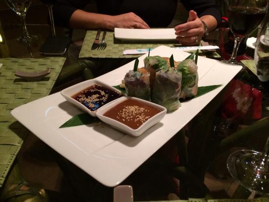Fusion Restaurant Jeraffe: Gyoza and Spring Rolls