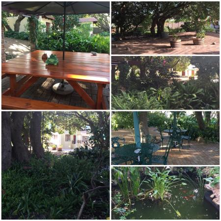Milkwood Lodge: Some pictures we took, but you have to experience it, pictures do not do justice to such a wonde