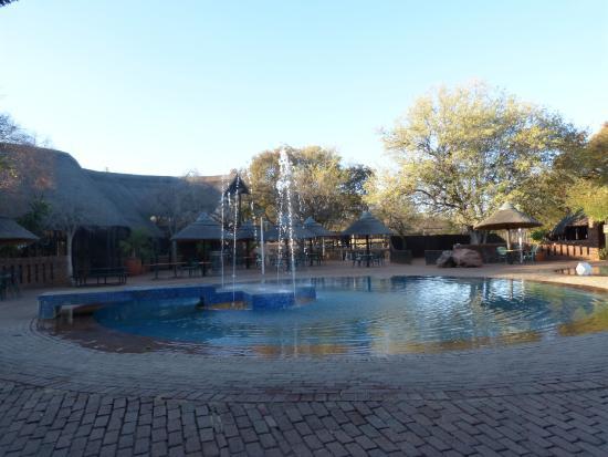 Golden Leopard Resort - Manyane : Piscine en face le restaurant.
