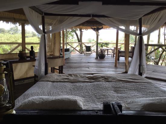 Cheetah Tented Camp: photo7.jpg