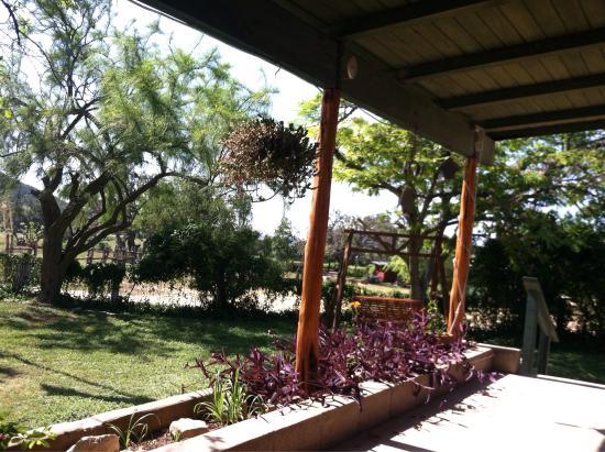 Dixie Dude Ranch: photo2.jpg