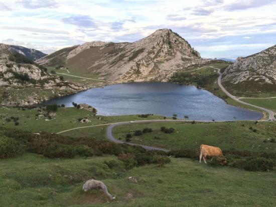 Lake Covadonga: photo1.jpg