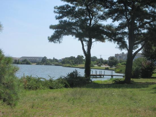 Silver Lake: A long the walk-running path