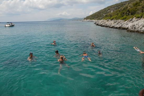 ostrica - Picture of National Marine Park of Alonissos and ...