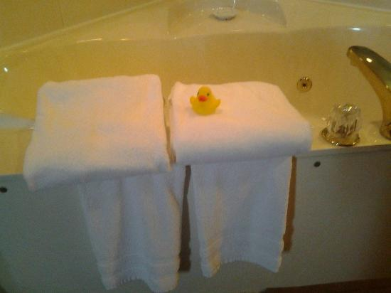 BEST WESTERN PLUS Trail Lodge Hotel & Suites: Rubber ducky