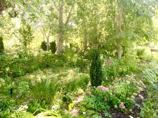 Linden Gardens: photo0.jpg