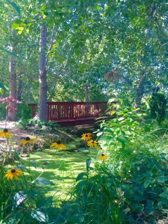Linden Gardens: photo1.jpg