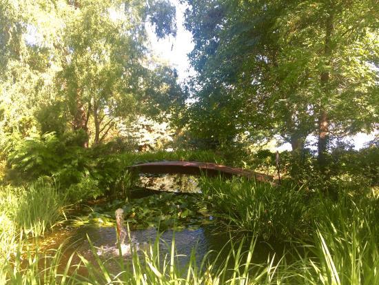 Linden Gardens: photo2.jpg
