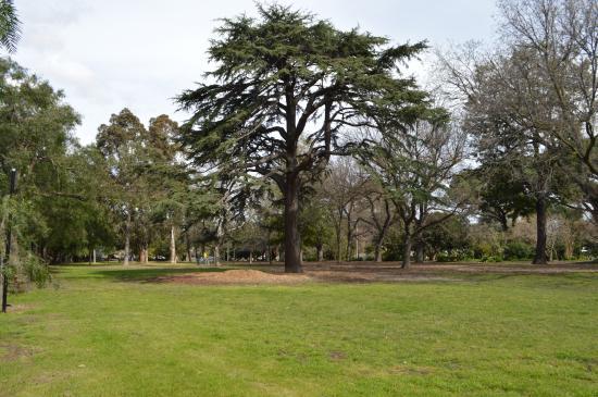 Alma Park