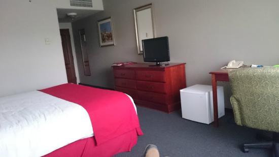 City Suites San Luis Potosí: habitación