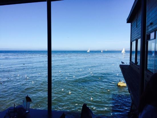 The Fish Hopper Restaurant Photo