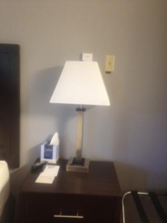 Blackstone Lodge and Suites: lamp in front of switch