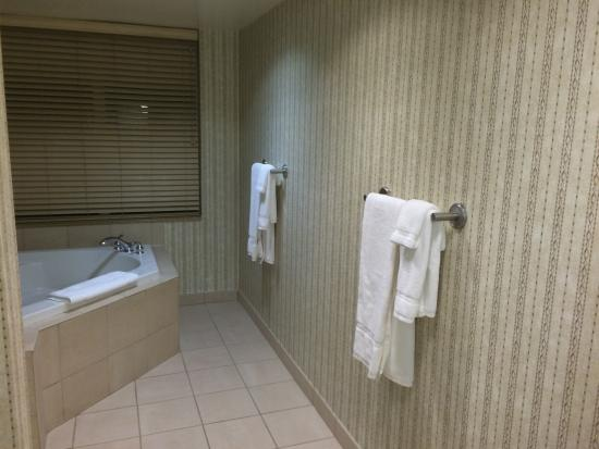 Extra Towels Whirlpool Suite Picture Of Hilton Garden Inn