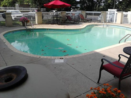 Sleep Inn: pool full of leaves and water not clean or clear