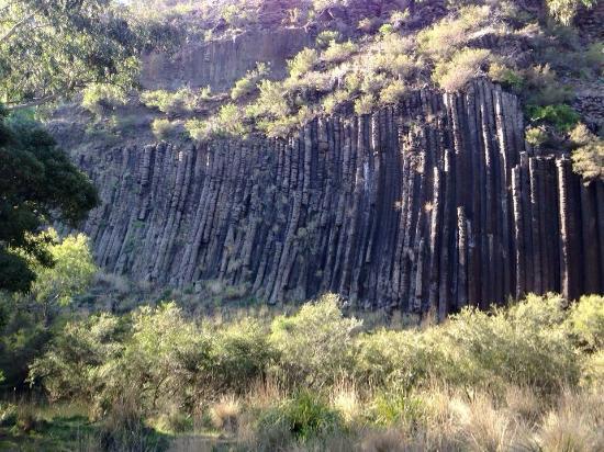 Organ Pipes National Park