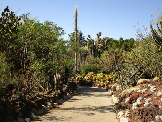 The Huntington Library, Art Collections And Botanical Gardens: Desert Garden  Pathway