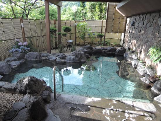 Hakone Reinanso : 広い方の露天風呂