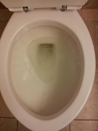 the toilet shouldn't look like this upon arrival