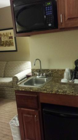 Holiday Inn Express Hotel & Suites Vancouver Portland North: Bar Sink Area