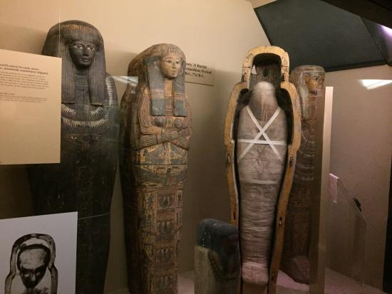 Ancient Egypt Exhibit at Chicago Field Museum