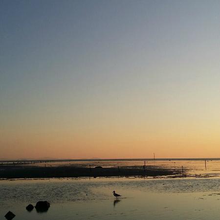 마시안 해변