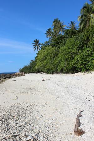 Photo of D'Lagoon Pulau Perhentian Kecil