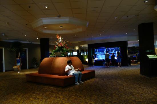 Lobby near bistro picture of anaheim majestic garden - Anaheim majestic garden hotel to disneyland ...