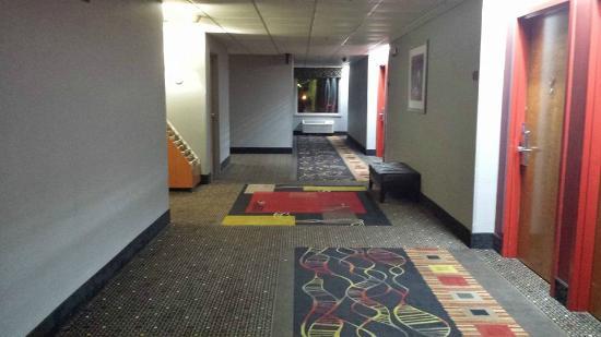 Comfort Suites Inn at Ridgewood Farm: Main hallway to elevators and rooms