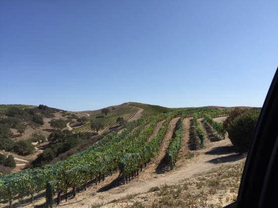 Demetria Estate Winery : photo0.jpg