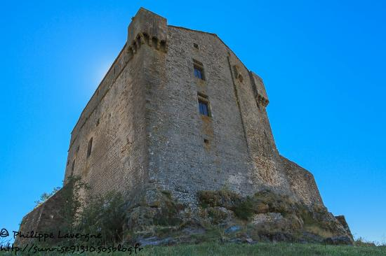 Castle of Montaigut