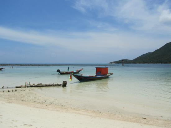 Spiaggia con bassa marea foto di malibu beach bungalows ko phangan