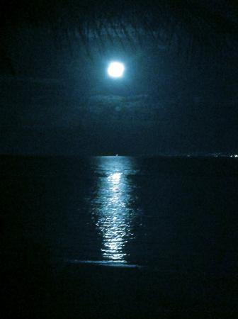 Lever de Lune vu de Te Ora Hau