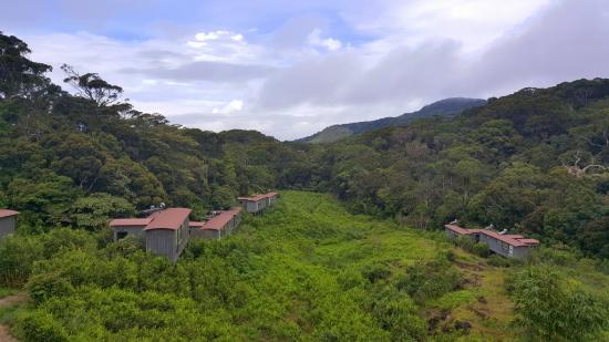 The Rainforest Ecolodge: The Chalets
