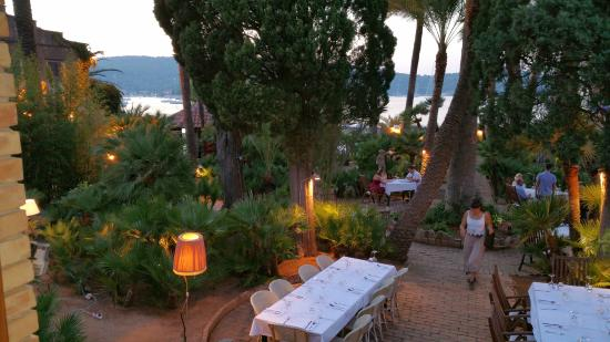 Garden Picture Of Villa Kaliopa Vis Tripadvisor