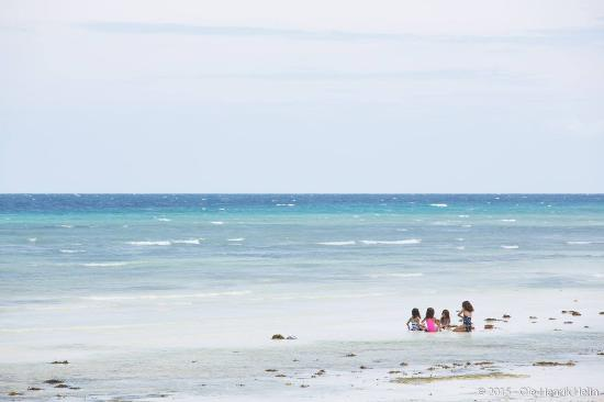 Amarela Resort: Amarela beach view 1