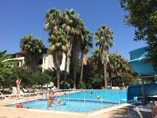Belpoint Beach Hotel: Бассейн