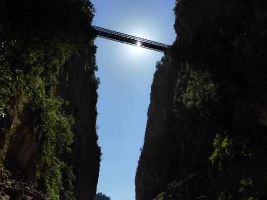 view of the bridge from the gorge - Picture of The Gorge ...