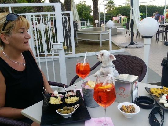 Hotel Palace: aperitivo al magnilia dry, AMICI DEGLI ANIMALI