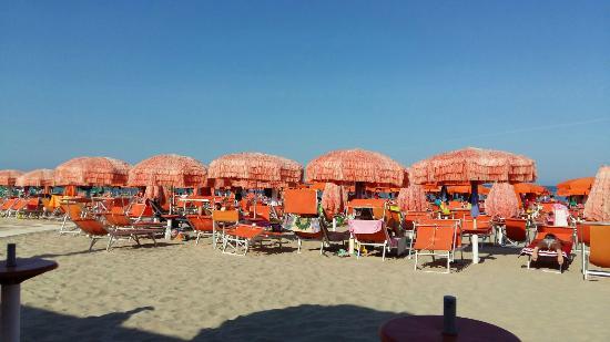 Hotel Palace: spiaggia pulita e attreezzata