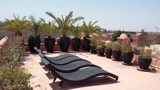 Riad Shemsi: Perfect to sunbathe