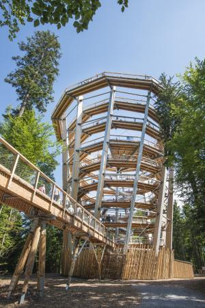 Bad Wildbad, Deutschland: Turm des Baumwipfelpfades