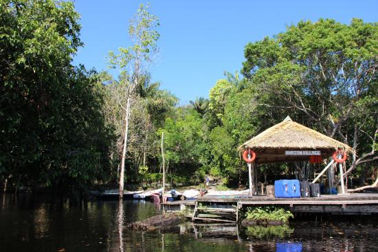Amazon Village Jungle Lodge: Amazon Village