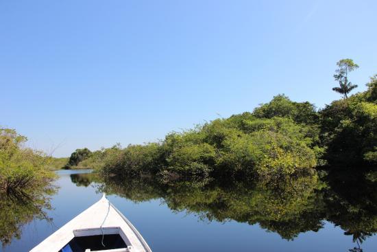 Amazon Village Jungle Lodge: on the jungle tour