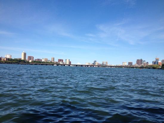 Charles River Bike Path: bike path view