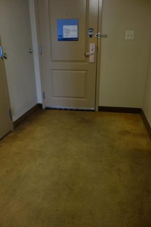 Hampton Inn & Suites Houston-Bush Intercontinental Airport : Dirty carpet