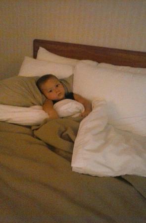Comfort Inn: Comfy beds