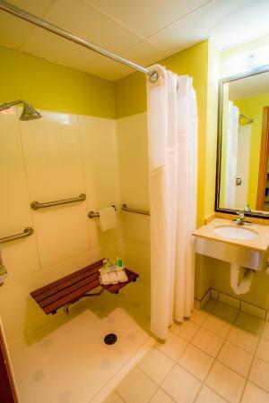 Holiday Inn Express Bemidji: Accessible Bathroom