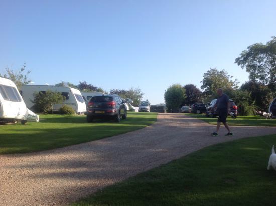 Ross Park Caravan Park : Caravans well spaced
