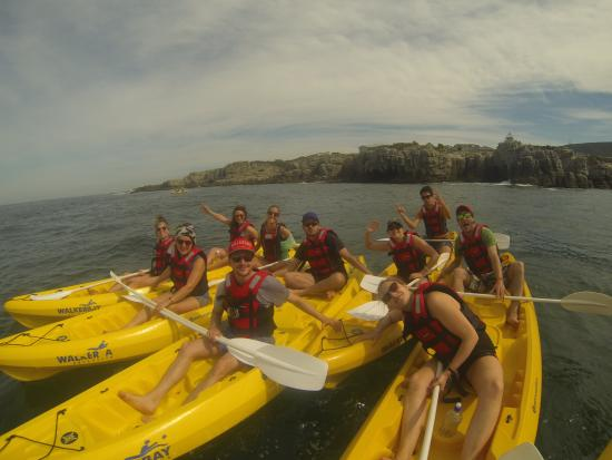 Walker Bay Adventures: Kayak Hermanus
